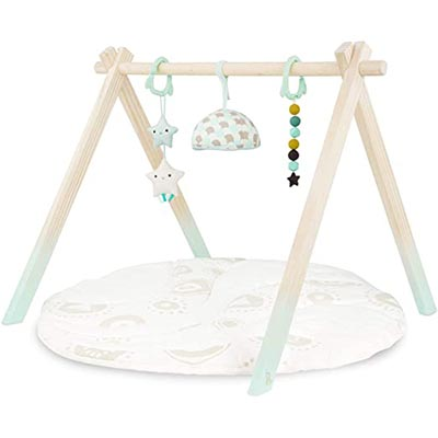B. Toys Wooden Baby Play Gym