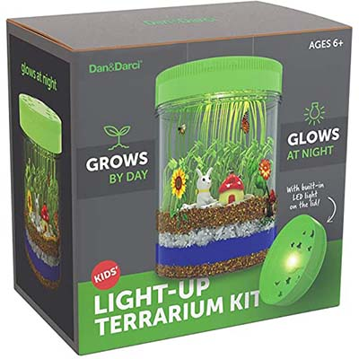 Light-Up Terrarium Kit for Kids with LED Light on Lid